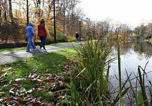 Top 10 places to live in New Jersey Essex Fells