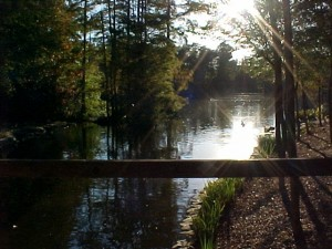 Top 10 places to live in South Carolina sumter
