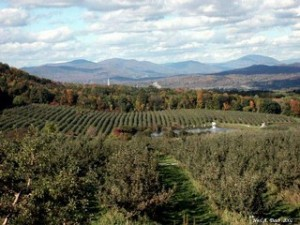 Top 10 places to live in vermont bennington