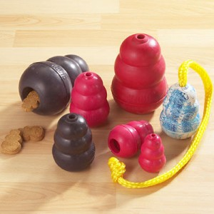 Top 10 things you need for a new puppy dog toys