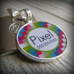 Top 10 things you need for a new puppy name tags