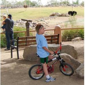 Phoenix, Arizona zoo
