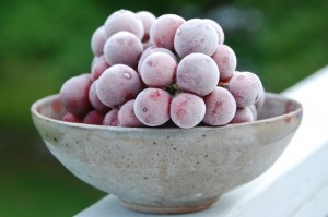 top 10 things for chocolate fondue frozen grapes