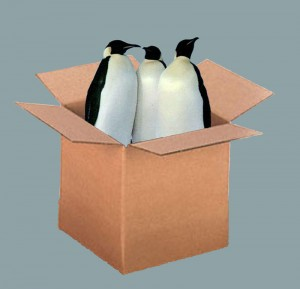 top 10 worst christmas gifts to wrap PENGUINS