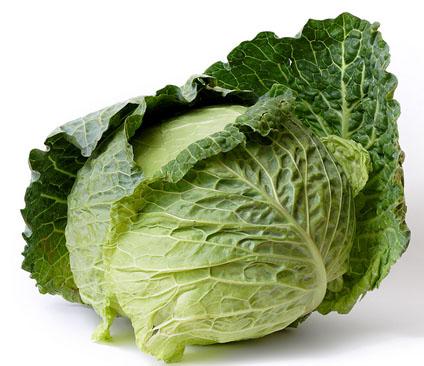 The Cabbage Craze