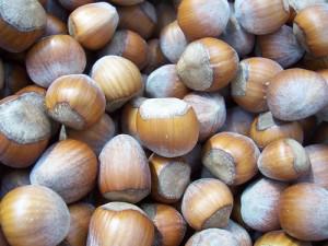 top 10 oregon foods hazelnuts