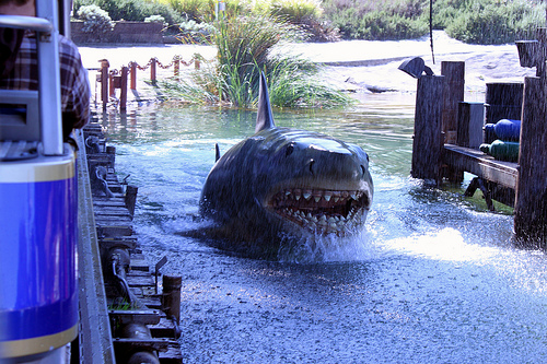 Shark – Jaws