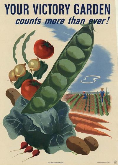 Victory Garden Blog