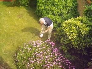 Gardening in the Suburbs
