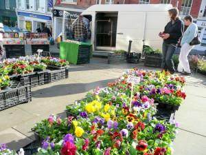Calendar Local Herb and Plant Festivals