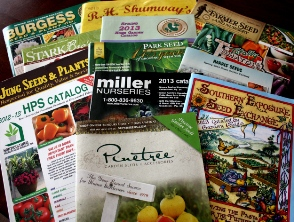 seed catalog ordering