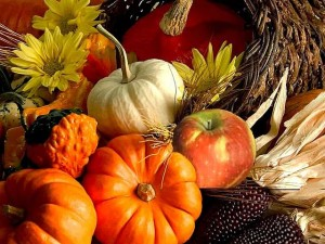 squash gourds and pumpkin