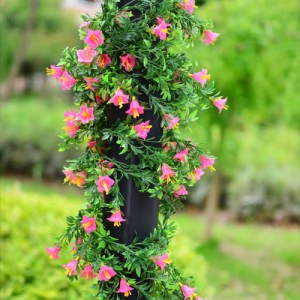 climbing flower vine with pink flowers