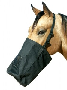 horse-feeding-bag