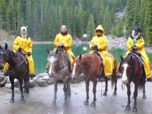 horse rain gear