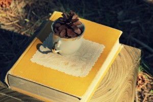 teacup on lace on a book