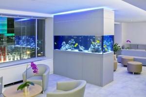 waiting room aquarium