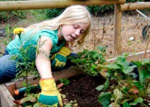child planting a garden