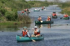 people kayaking on river