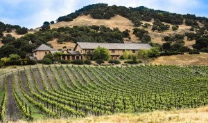 Personal winery tour