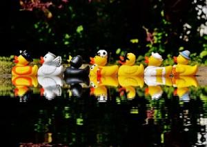 DÉCOR – Glitter ducks
