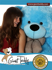 Giant Teddy catalog