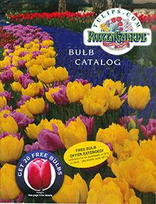 Tulips.com catalog