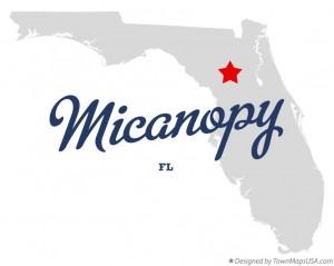 Micanopy Florida map