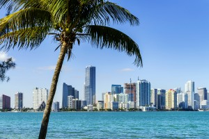 Miami Downtown Skyline places to visit in florida