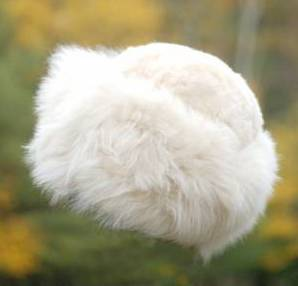 mt. caesar alpaca hats