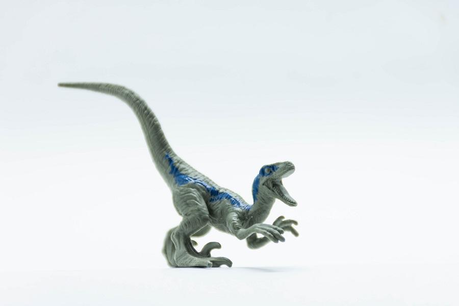 toy dinosaur raptor