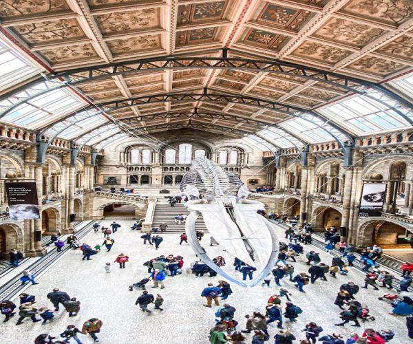 Best Museum Gift Shops Online