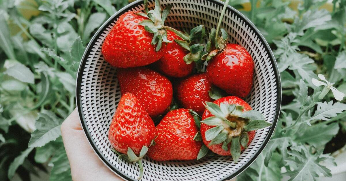 4 Fruits You Can Grow in Your Backyard