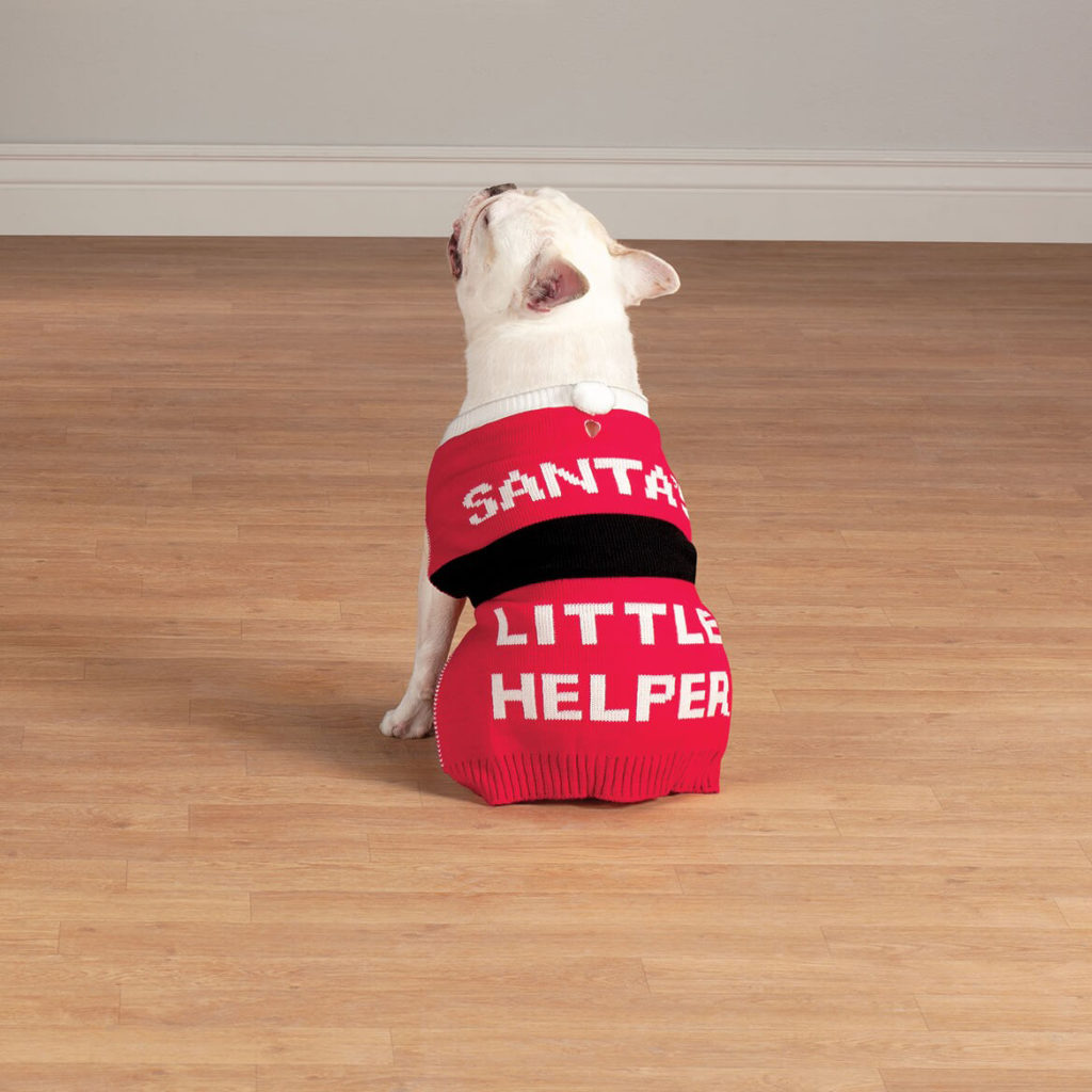 Gifts & Accessories for Pets