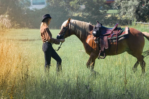Horseback Riding in the Fall